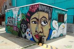 A Split Frida & Diego (FrogLuv) Tags: detroitmichigan streetart wallart summer mexicantown bagleystreet mural fridakahlo diegorivera