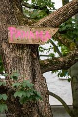 Panama (UsualRedAnt) Tags: berlin pflanze rosa deutschland baum ef100mmf28lmacrois wegweiser esperantoplatz neukölln f56 pfeil streetart canon schild natur 70d germany