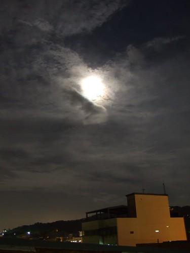 雲掩月_地面_2