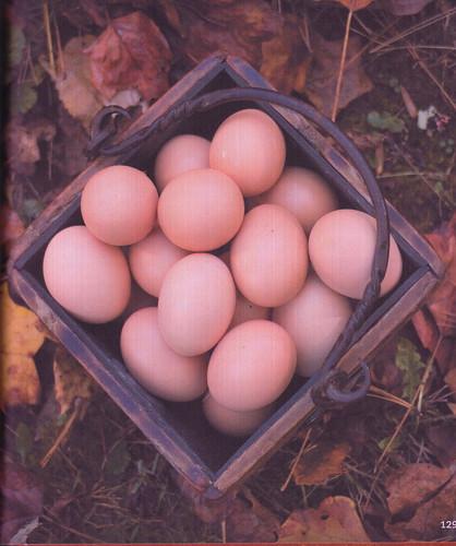 chickencanning_0014
