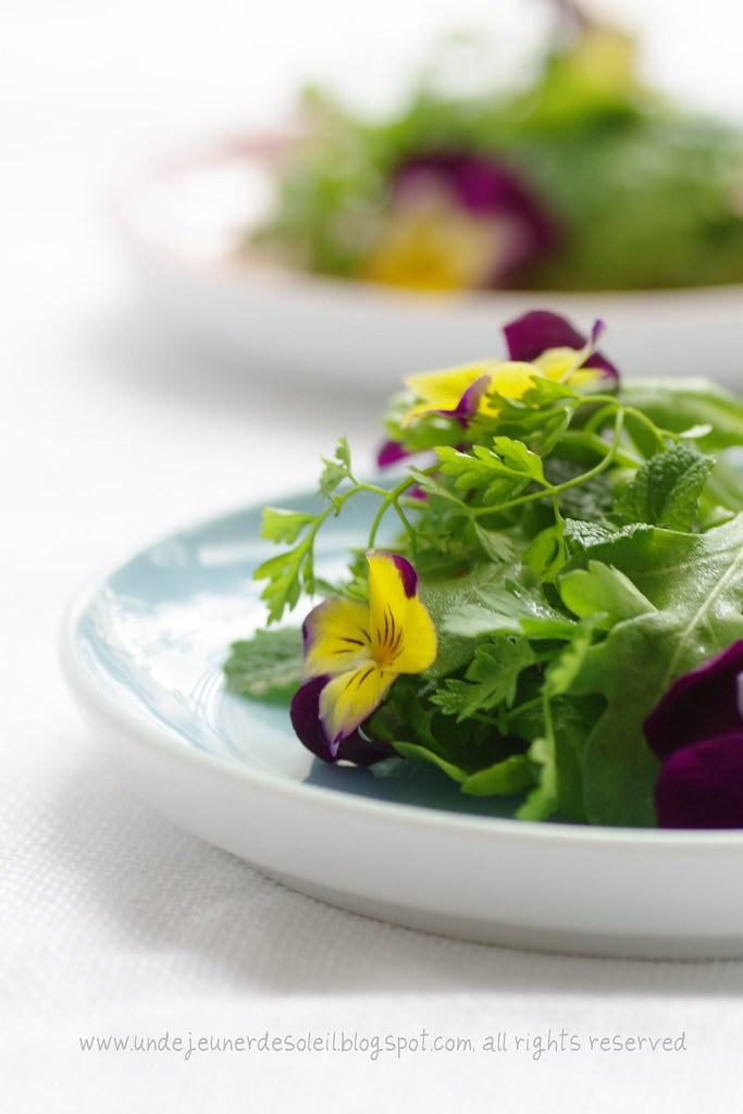 Herbs and flowers salad