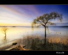 Magic lake (sirVictor59) Tags: italy lake lago nikon italia top magic f100 topf300 marta viterbo topf200 lazio d300 10mm topf400 topf450 montefiascone topf500 capodimonte lagodibolsena sigma1020 topf700 topf600 topf550 topf800 topf650 topf750 topf850 colorphotoaward sunsetmania nikond300 sirvictor59 saariysqualitypictures fleursetpaysages magiayfotografia lelitedespaysages
