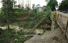 29 Iunie 2010 » Râul Siret