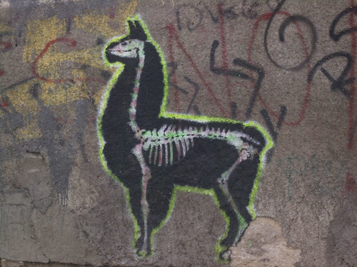 graffiti of a llama skeleton with the outline of fur/skin/body drawn around the outside
