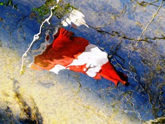 Oh Canada, Eh? (#1185) (protophotogsl) Tags: blue red white canada water stream flag sensational brook canadaday canad kanada reflectiion kanata  iamcanadian july1 1july happycanadaday    canad    kanad   kanda  protophotogsl mygearandmepremium mygearandme~4awardthread img1955auto4x gianaai ceanada
