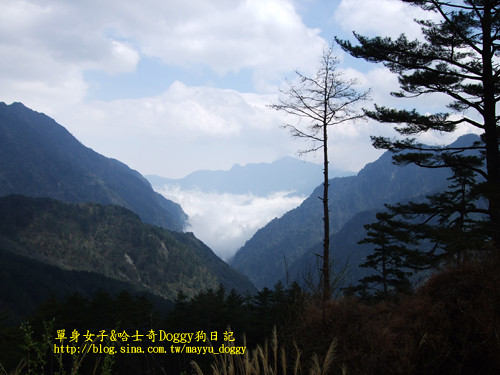 2010-03-10-094