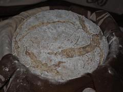 Bread Baking Babes' - Korni