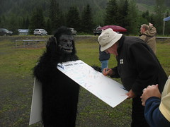 Signing the Ape