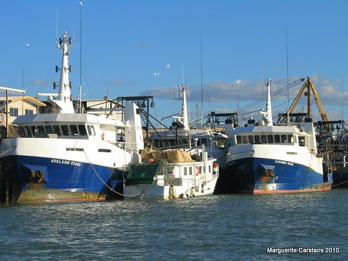 Karumba-Fishing and prawn trawlers