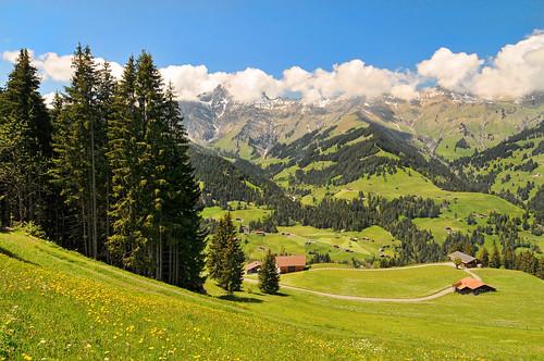 フリー写真素材, 自然・風景, 山, 丘, スイス,