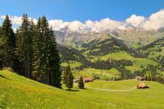 [フリー画像] 自然・風景, 山, 丘, スイス, 201007141900