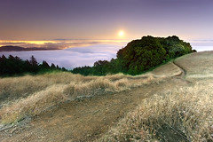 Tamalpais in Moonlight - Marin County, California (PatrickSmithPhotography) Tags: sanfrancisco sunset moon water grass rock fog landscape bay oak marin dirt moonrise moonlight diablo tamalpais richmondbridge sanrafaelbridge dryseason baylaurel