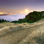 Tamalpais in Moonlight - Marin County, California