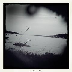 Postcard summer '10