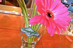 GIB Raspberry Wheat Ale Launch