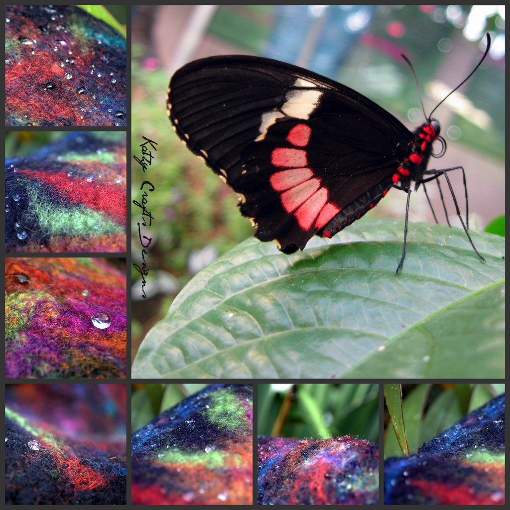 The Worlds Best Photos Of Felt And Mariposa Flickr Hive Mind Lidia Butterfly Color Natural Kathy Crafts Designs Tags Red White Black Blanco Rojo Negro