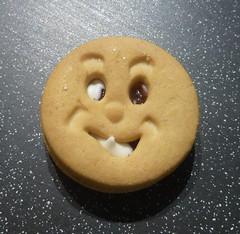 Utilitarian biscuit