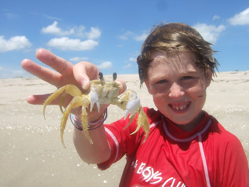 Jack with a ghost crab