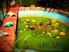 Pond=池塘 chí táng