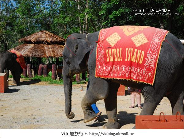 【泰國旅遊】2010‧泰輕鬆~Via帶你玩泰國曼谷、普吉島!21