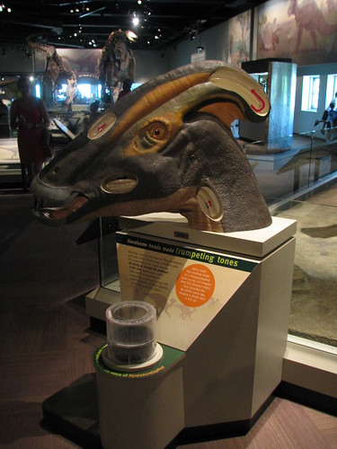 The Musical Parasaurolophus Head