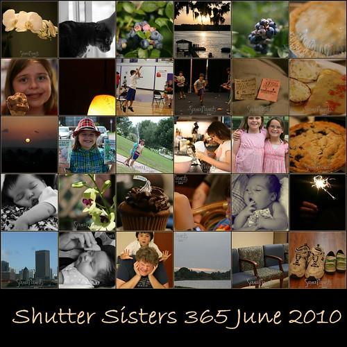 Shutter Sisters 365 June 2010-1