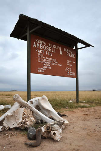 WelcometoAmboseli