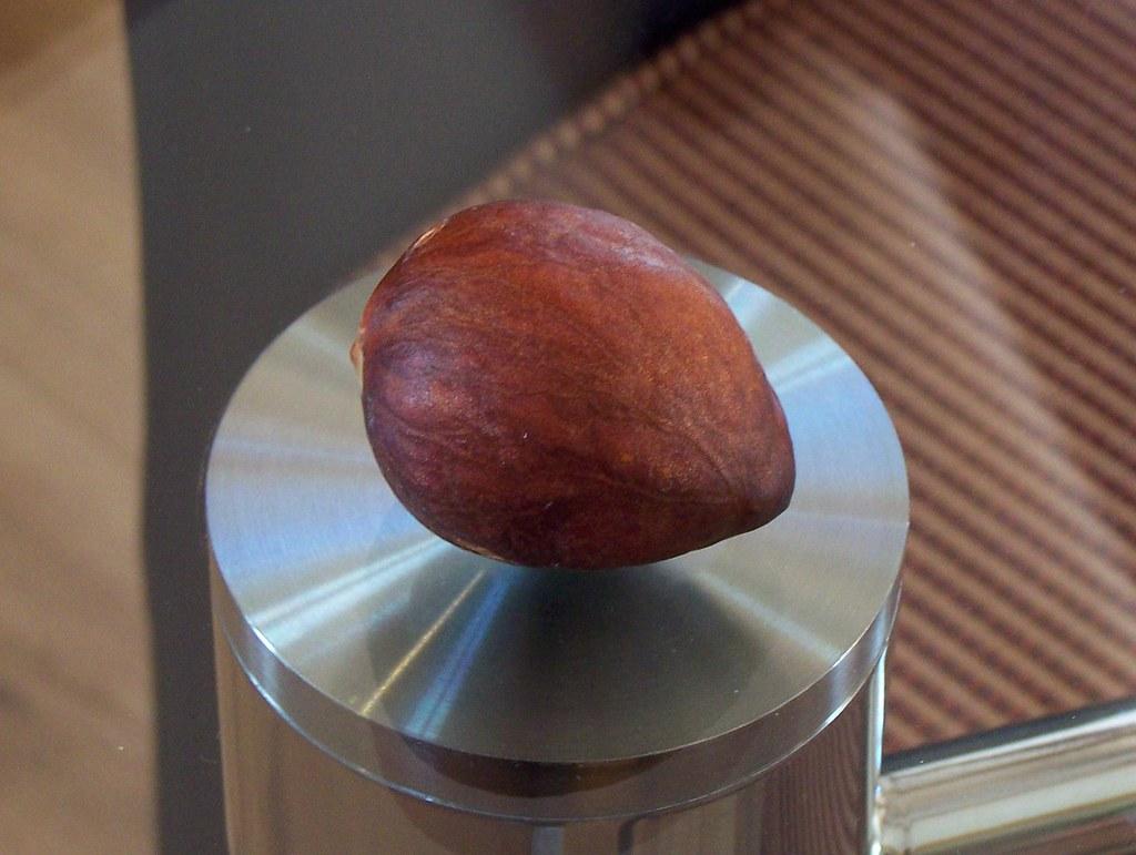 Avacado nut on glass table