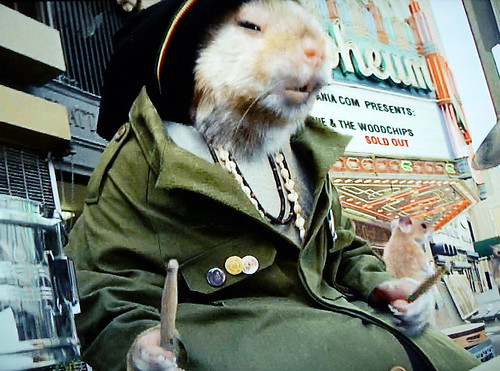 Kia Drumming Hamster