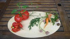 Morimono dell'orto (Ikebana Marisa) Tags: ikebana tomatoes pomodori morimono oharaschool