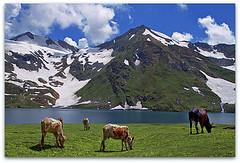 dodipat sar lake, kaghan valley , PAKISTAN (TARIQ HAMEED SULEMANI) Tags: pakistan tourism trekking canon hiking lakes 7d kaghanvalley tariq picnik naran jalkhad concordians sulemani dodipatsarlake baisal