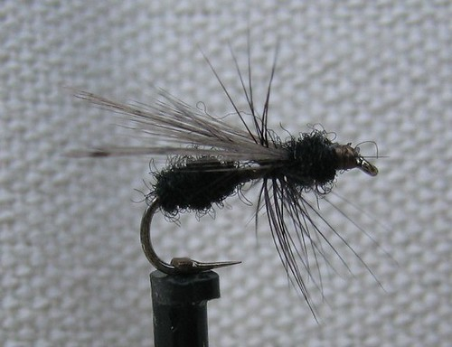 image: black flying ant (artificial trout fly)