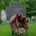 Belleau, German WWI-cemetery, France #8