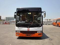 ML7495_a