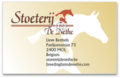 horse-business-card-design-sdn