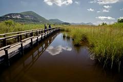 IMG_0981 - Oasi di Massaciuccoli PI (mauropaolocascasi) Tags: landscapes nuvole toscana acqua riflessi paesaggi palude ponti canneto abigfave oasidimassaciuccoli