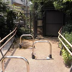 Don't Walk Park 03