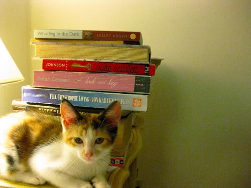 Ramona + books