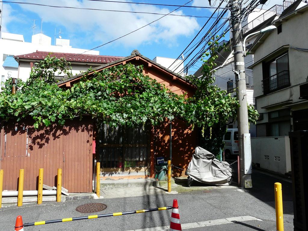 Grape Maniac in Minato-Ku