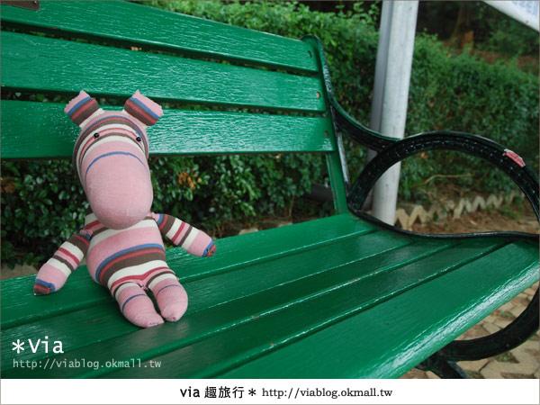 【關西六福莊】精彩秘探野生動物園/DIY手作/農趣樂~!14