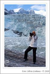Glaciar Pia (Retrovisor Online) Tags: tierradelfuego ushuaia canaldebeagle glaciar patagnia capehorn pinguins puntaarenas pinguinera glaciarpia fimdomundo antrtica cabodehornos terradofogo geleiras pinguinomagallanico channelbeagle cabohorn silvialinhares retrovisoronline glaciarmarinelli islasdelatlnticosur crucerosaustralis elfinaldelmundo baiawulaia baiaainsworth ilhotestucker avenidadasgeleiras glaciarespilotoenena