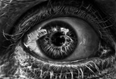 'Startled' (Kristofer Williams) Tags: blackandwhite bw macro eye open startled sony a200 tamron 90mm redfield fractilius kriswilliams