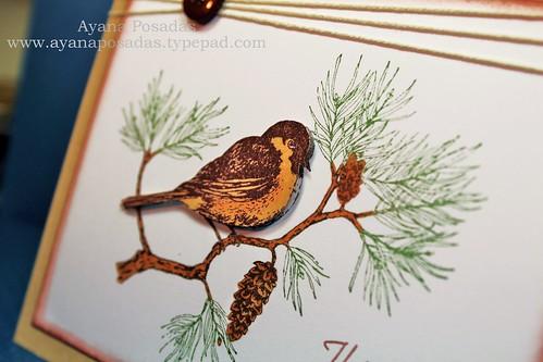 Chickadee at Rest (3)