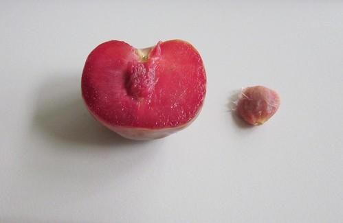 Pluot Frucht - Innen & Kern