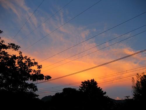 夏の夕焼け 画像3