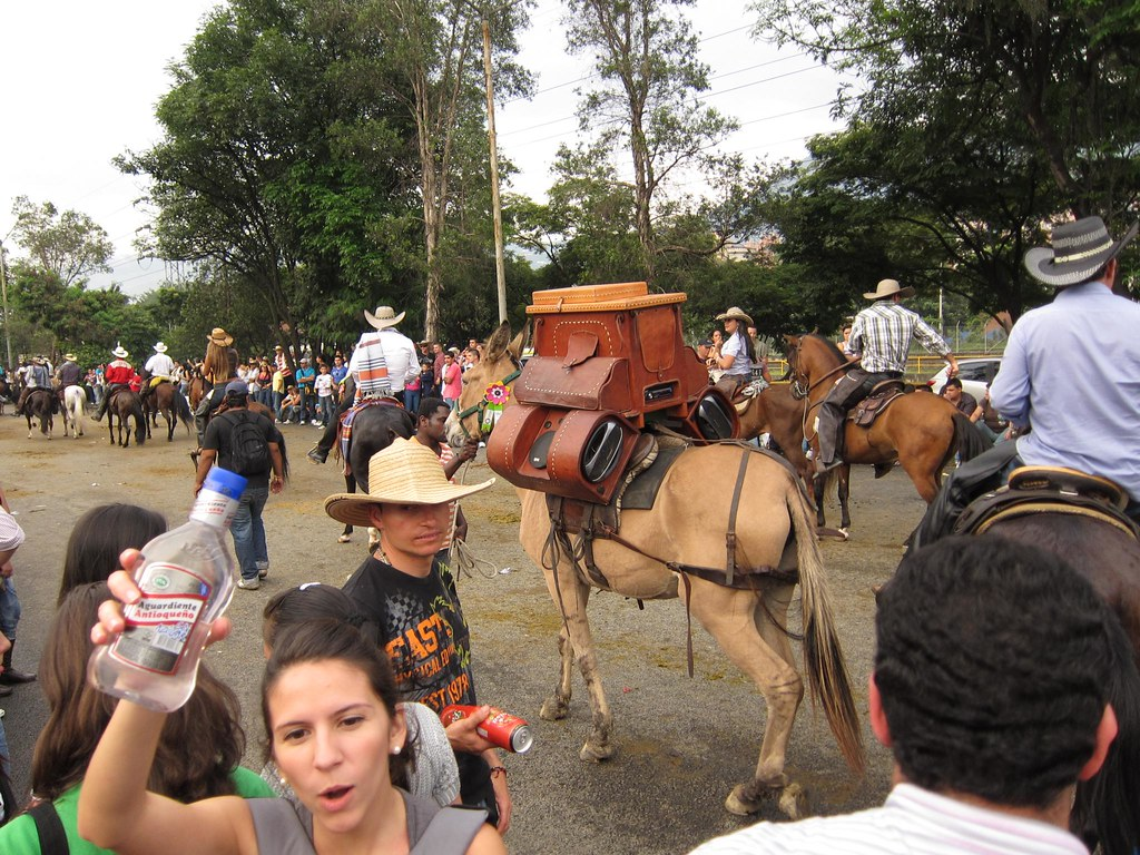 A woman holds up a bottle of Aguardiente (the local firewater), while a donkey carries custom speakers blasting vallenato music.