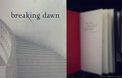 Breaking Dawn [14/201] (F.Photogrphy) Tags: new moon me movie reading dawn book twilight break you jacob bella breaking eclipes robsten