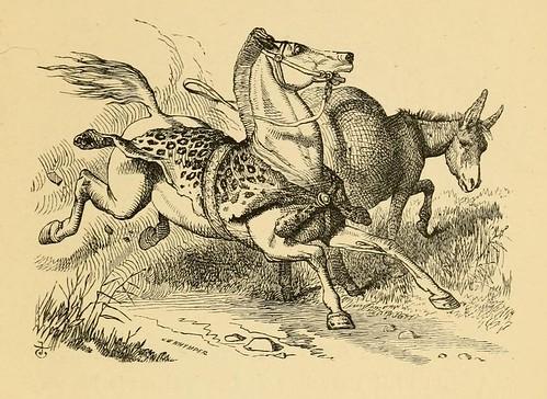 Equus Superbus et Asinus
