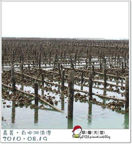 白水湖漁港27-2010.08.19