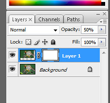 layer mask2 during manual focus stacking in adobe photoshop